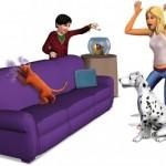 Домашние любимцы и уход за ними